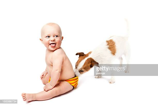 Small dog sniffing the diaper of sitting and smiling baby