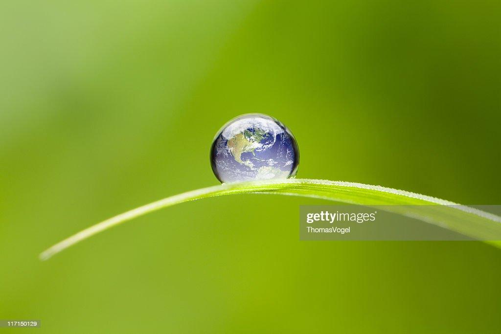 Kleine Erde Nordamerika. Natur-Umgebung, grüne Tropfen Welt : Stock-Foto
