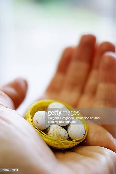small easter eggs - gregoria gregoriou crowe fine art and creative photography. imagens e fotografias de stock