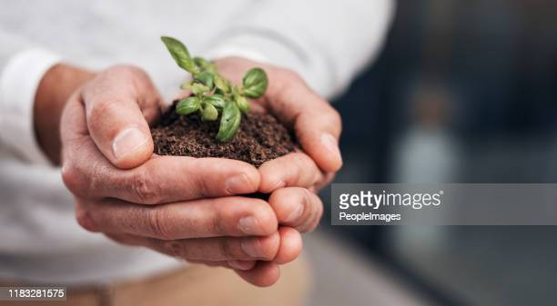 small efforts lead to big success - efficiency stock pictures, royalty-free photos & images