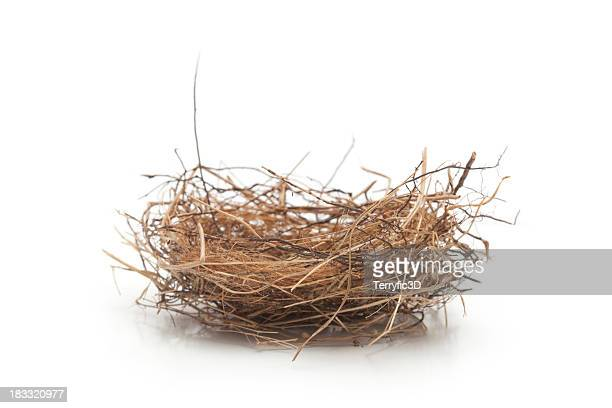 Small Empty Bird Nest Isolated on White