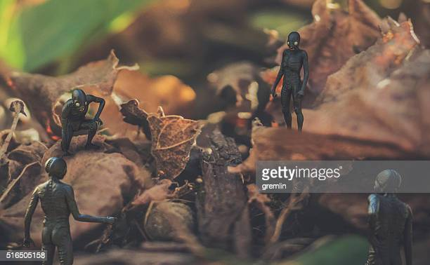 small fantasy creatures in nature - monster fictional character stock pictures, royalty-free photos & images