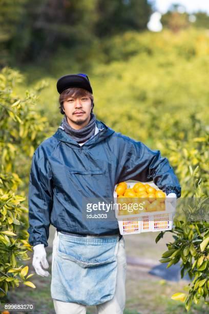 小さな農場の所有者採れたてのオレンジ彼の柑橘類のファームで