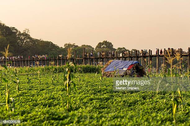 small farmhouse at u bein bridge - merten snijders stock pictures, royalty-free photos & images