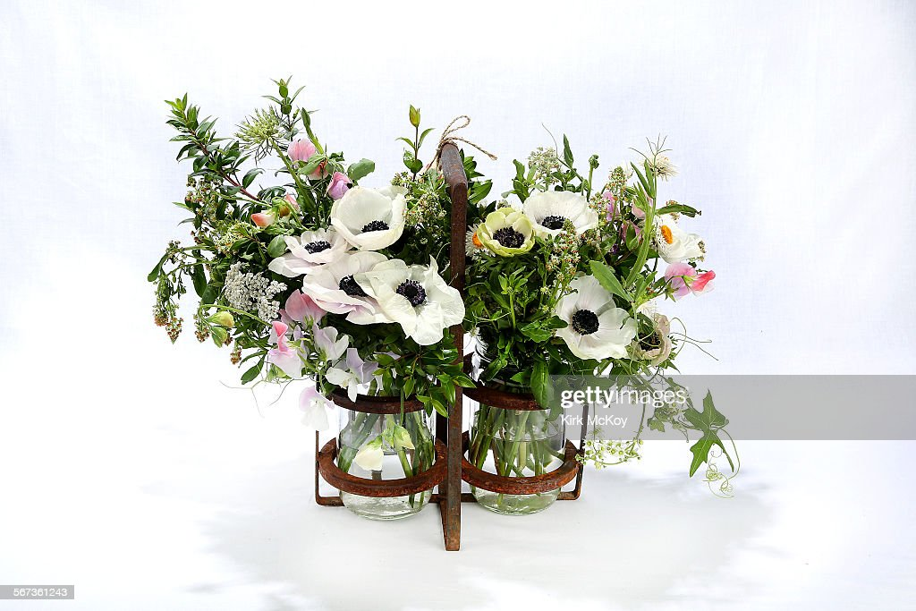 Small Field Grown Arrangement Of White Panda And Pastel Anemones Queen Anne S Lace
