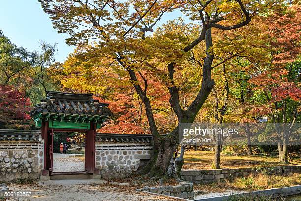 CONTENT] Small gate at secret garden of Changdeokgung Palace with autumn foliage Seoul 2013