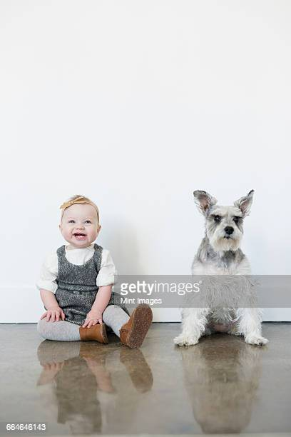 A small girl and a dog sitting side by side.