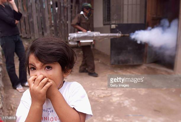 Small girl covers her mouth against the fumes as a technician fumigates her home July 25, 2002 in Tegucigalpa, Honduras. Haemorrhagic Dengue, a...