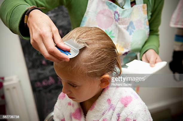 small girl having a nit treatment - louse stock pictures, royalty-free photos & images