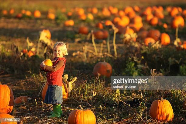 Small girl holding pumpkin in pumpkin patch