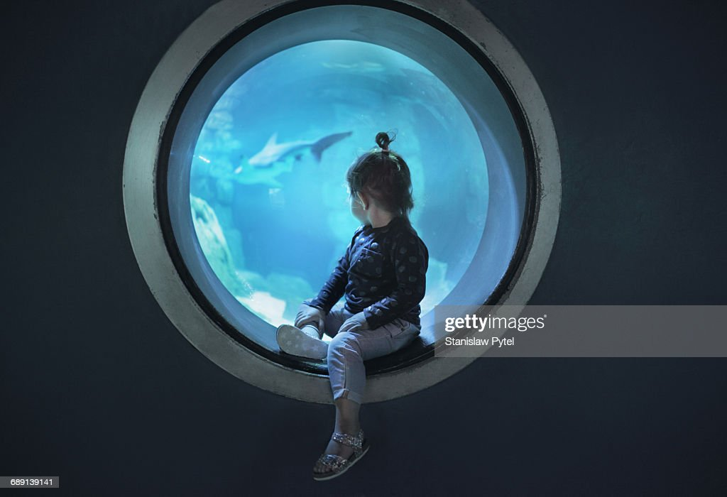 Small girl looking at window in aquarium : Stock Photo
