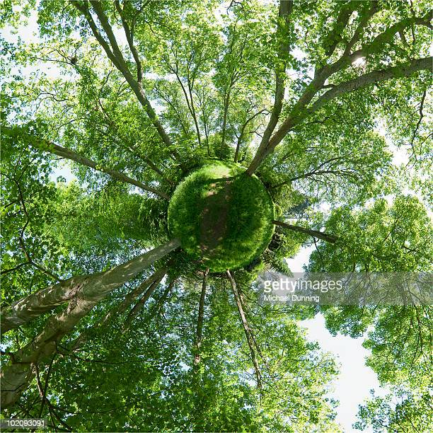small green planet - symmetry stock pictures, royalty-free photos & images