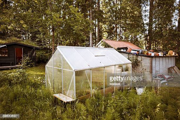 Small greenhouse on field