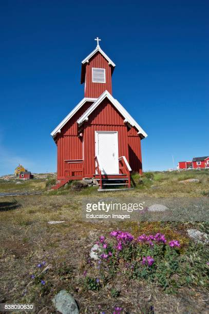A small Greenlandic church from Ilimanaq a settlement in the Qaasuitsup municipality in western Greenland The national flower of Greenland Dwarf...
