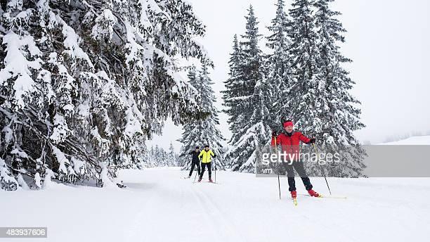 Kleine Gruppe Back Country Ski nordisch