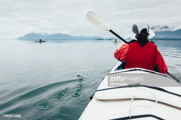 a small group of sea kayakers paddle pristine waters of muir inlet in glacier bay national park, alaska - sea kayaking stock pictures, royalty-free photos & images