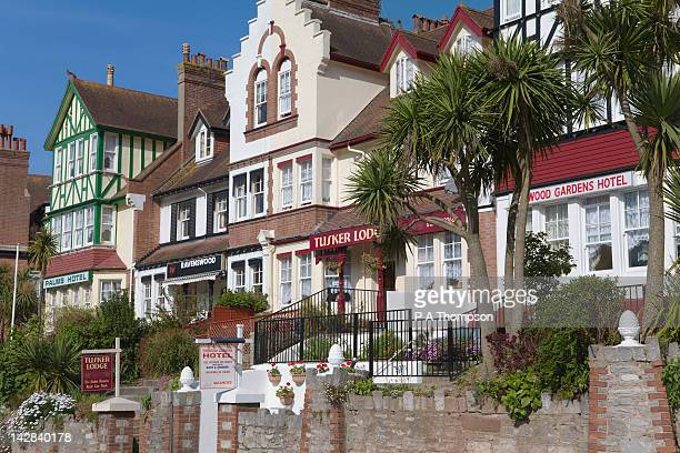 small hotels and guest houses, torquay, devon, england - torquay,_victoria stock pictures, royalty-free photos & images