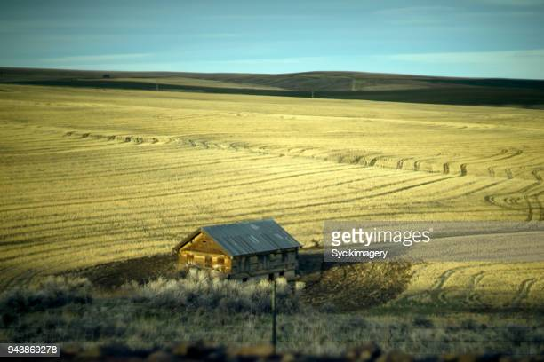 Small house among agricultural land