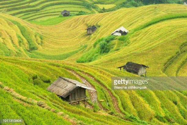 small house in valley of rice terrace