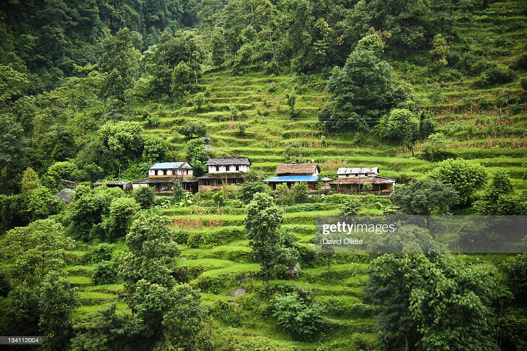Small houses in green mountain : Stock-Foto