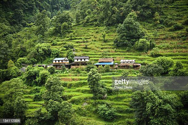 small houses in green mountain - david oliete stock-fotos und bilder