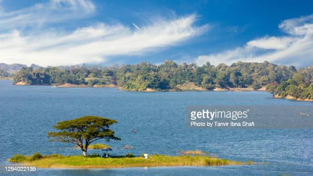 a small island with a large tree in a river with mountains - bangladesh nature stock pictures, royalty-free photos & images