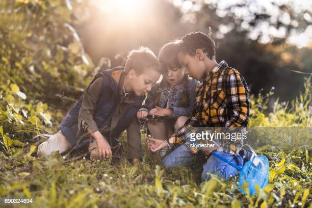 Small kids examining flower with magnifying glass in the forest.