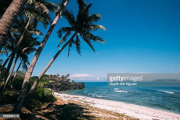 small ly son island, vietnam - quảng ngãi stockfoto's en -beelden