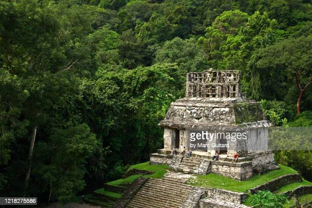 small mayan ruin amidst a dense jungle canopy, palenque, mexico - old ruin stock pictures, royalty-free photos & images