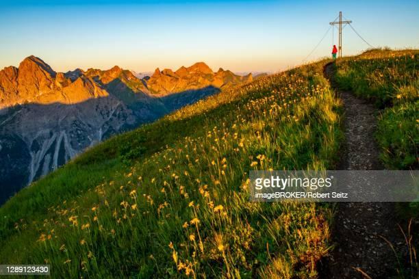 small mountain trail with mountaineer and summit of the uentschenspitze at sunrise, schoppernau, bregenzerwald, vorarlberg, austria - 1 minute 50 ストックフォトと画像