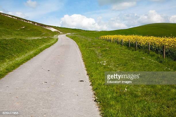 Small narrow lane on chalk down land scarp slope, Allington Down, Wiltshire, England.
