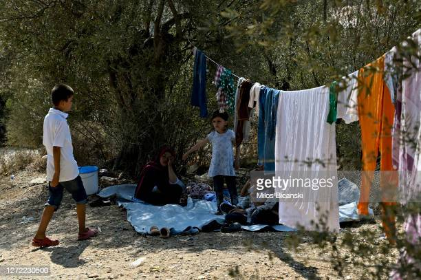 Small number of immigrants are still living in olive grove not fear away from burned Moria camp in the northeast of the capitol on the Greek island...