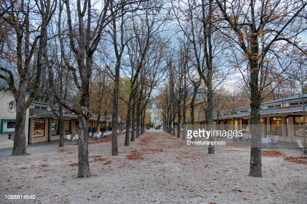 small park with trees surrounded by shops on both sides near the casino,baden baden. - emreturanphoto stock pictures, royalty-free photos & images