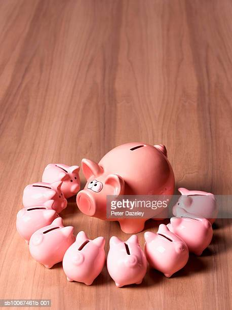 Small piggy banks surrounding big piggy bank, elevated view