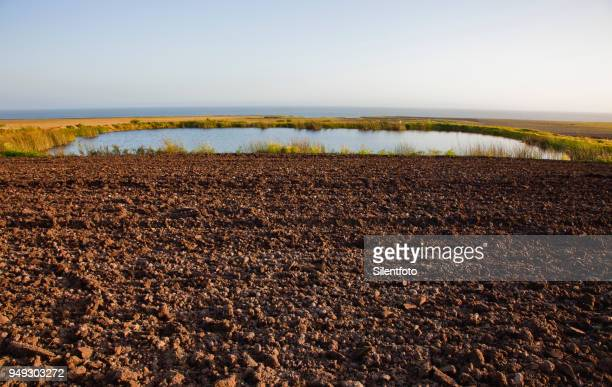 a small reservoir in agricultural farm field on california coast - 休耕田 ストックフォトと画像