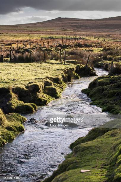 Small river flowing through the rugged bleak windswept Bodmin Moor in Cornwall.