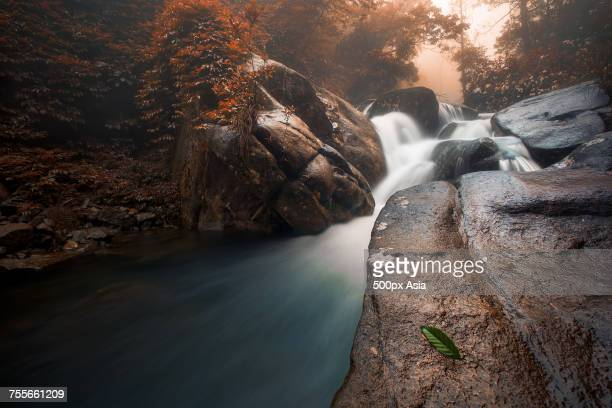 Small river streaming over big rocks in forest, Wenzhou, Zhejiang, China
