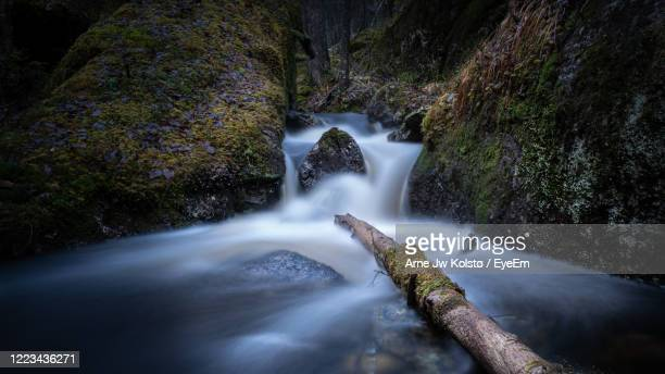 small river with a waterfall between moss-grown boulders in a wild nordic forest - arne jw kolstø stock pictures, royalty-free photos & images