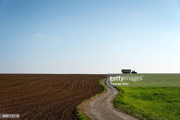 Small road through agricultural fields