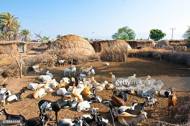 Small rural village near Asayta
