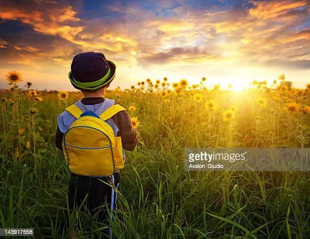 太陽に向かって歩き