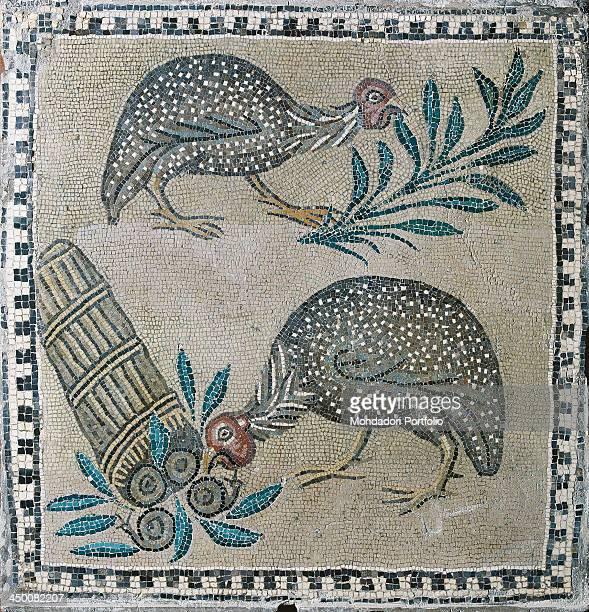 Small square with guineafowls 18th Century polychrome mosaic