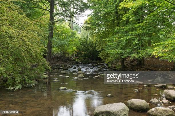 Small stream at the Oliwa Park
