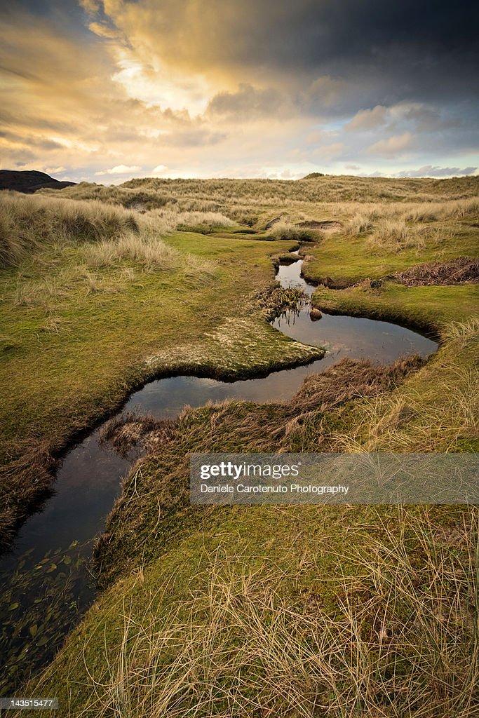 Small stream in landscape : Stock Photo