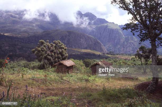 Small thatch huts in clearing of Mulanje Mountain Forest Reserve in southern Malawi Africa