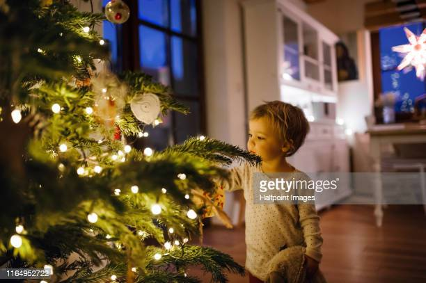 a small toddler girl looking at christmas tree indoors. - innocence stock pictures, royalty-free photos & images