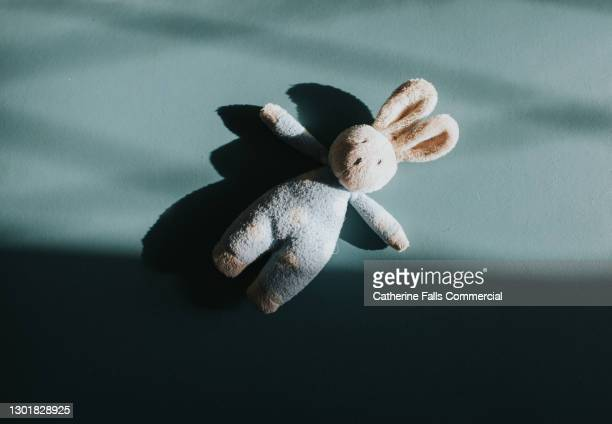 small toy bunny - adoption stock pictures, royalty-free photos & images