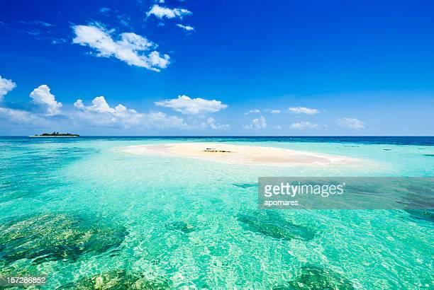 Petite île déserte tropicale avec des eaux turquoise et un ciel sans nuage