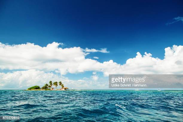 small tropical island - belize stock pictures, royalty-free photos & images
