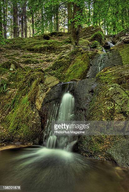 Small waterfall in a spring woodland, taken on March 28, 2011.
